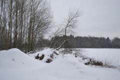 zima_na_budouci_zahrade