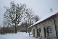 zimni_chalupa_snih_dub