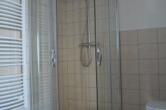 koupelna_sprcha_zebrik