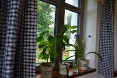 okno_v_kanafasu