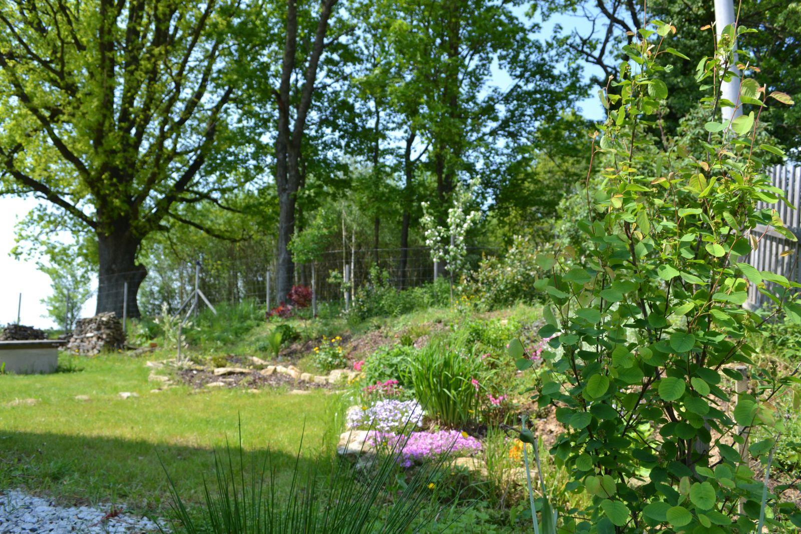 zahrada_DSC_0051