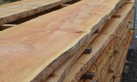 Máme rádi dřevo